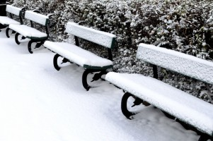 bench_and_snow_202114.jpg